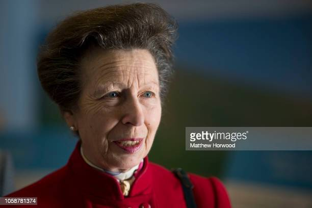 Princess Anne, Princess Royal, patron of Welsh cancer charity Tenovus Cancer Care, looks on after opening the charity's third Mobile Support Unit at...
