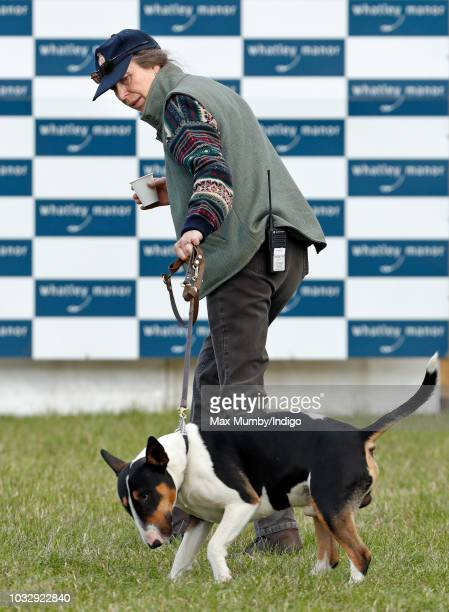 Princess Anne, Princess Royal walks her bull terrier dog as she attends the Whatley Manor Horse Trials at Gatcombe Park on September 7, 2018 in...