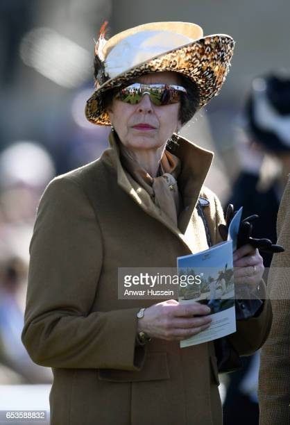 Princess Anne The Princess Royal attends Ladies Day at Cheltenham Festival on March 15 2017 in Cheltenham England