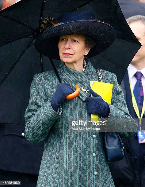 Princess Anne The Princess Royal shelters under an umbrella as she attends the Crabbie's Grand National horse racing meet at Aintree Racecourse on...