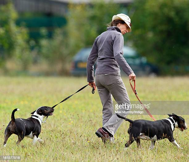 Princess Anne, The Princess Royal walks her Bull Terrier dogs as she attends the Gatcombe Horse Trials at Gatcombe Park, Minchinhampton on September...