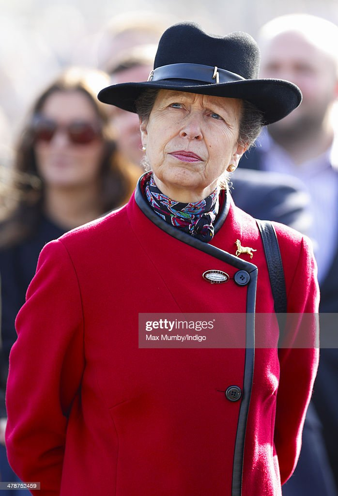 Princess Anne, The Princess Royal watches the racing as she attends Day 4 of the Cheltenham Festival at Cheltenham Racecourse on March 14, 2014 in Cheltenham, England.