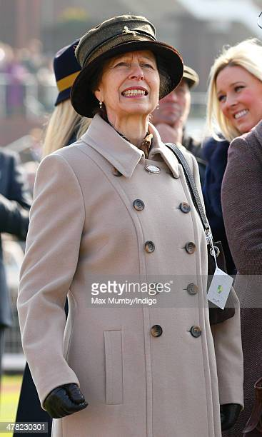 Princess Anne The Princess Royal watches the racing as she attends Ladies Day day 2 of the Cheltenham Festival at Cheltenham Racecourse on March 12...