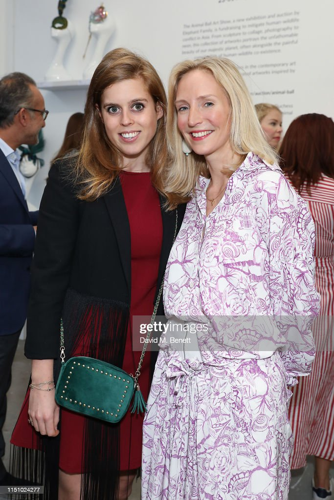 Animal Ball Art Show Private View Presented by Elephant Family : News Photo
