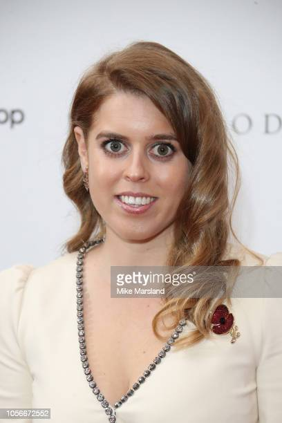 Princess Beatrice of York attends The 9th Annual Global Gift Gala held at The Rosewood Hotel on November 2 2018 in London England