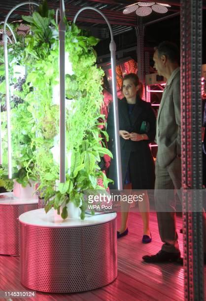 Princess Beatrice of York speaks with garden designer Tom Dixon in his Gardening Will Save The World Garden at the RHS Chelsea Flower Show 2019 press...