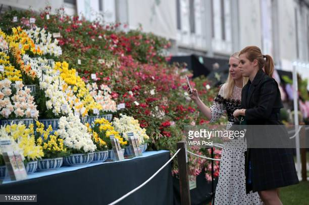 Princess Beatrice of York with her friend Alice NaylorLeyland as they look at a display during their visit to the RHS Chelsea Flower Show 2019 press...