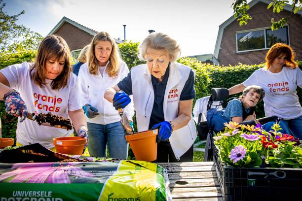 NLD: Princess Beatrix Volunteers In Maartensdijk
