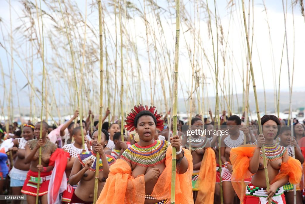 Zulu maidens gather for the annual reed dance in South Africa : News Photo