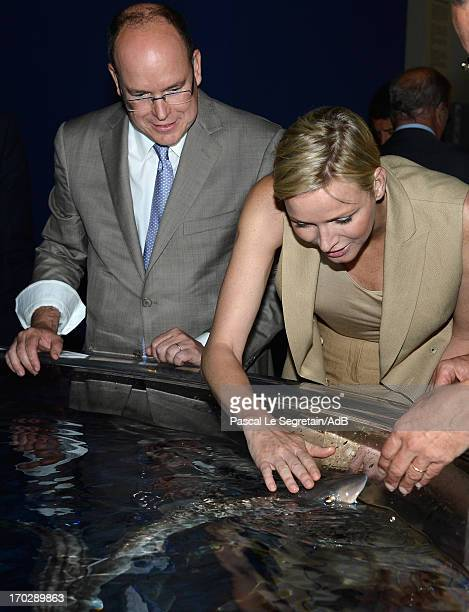 Princess Charlene of Monaco feeds baby shark as Prince Albert II of Monaco watches during a visit to a shark exhibition at the Oceanographic Museum...