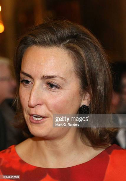 Princess Claire of Belgium assists a New Year Reception for Country Officials at the Royal Palace on January 29, 2013 in Brussels, Belgium.