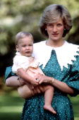 Princess diana in the grounds of government house in auckland new picture id73425071?s=170x170