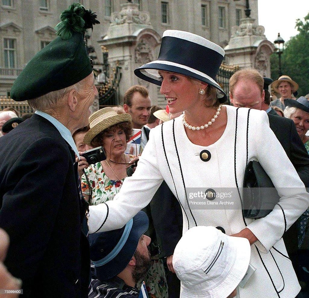 Diana  Meets Veteran : News Photo
