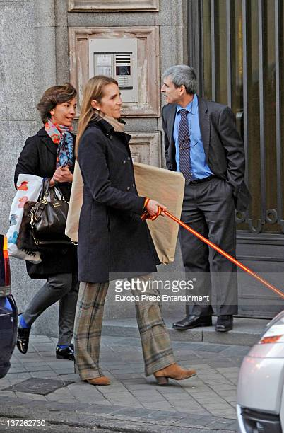 Princess Elena of Spain is seen with her pet dog and a leash with the Spanish flag on January 2 2012 in Madrid Spain