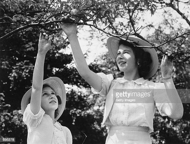 Princess Elizabeth and Princess Margaret Rose play with their pet chameleon July 8 1941 on the grounds of Windsor Castle Berkshire Buckingham Palace...
