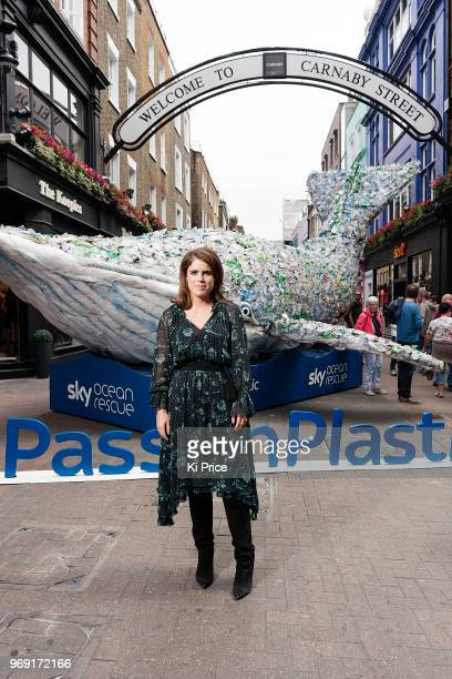 Princess Eugenie attends a photocall on Carnaby street for the launch of Pass on Plastic an exclusive pop up from Project 0 and Sky Ocean Rescue The...