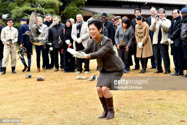 Princess Hisako of Takamado releases a duck as foreign deplomats are invited at the Shinhama Kamoba on December 1 2017 in Ichikawa Chiba Japan