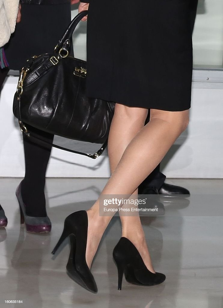 Princess Letizia of Spain arrives to a forum organized by Cancer Spanish Association on February 4, 2013 in Madrid, Spain.