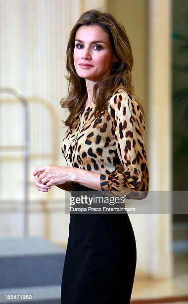 Princess Letizia of Spain attends an audience at Zarzuela Palace on October 21 2013 in Madrid Spain