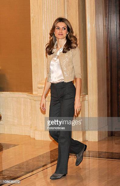 Princess Letizia of Spain attends Audiences at Zarzuela Palace on January 31, 2011 in Madrid, Spain.