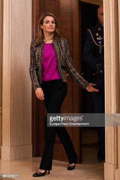Princess Letizia of Spain attends audiences on January 8 2014 in Madrid Spain