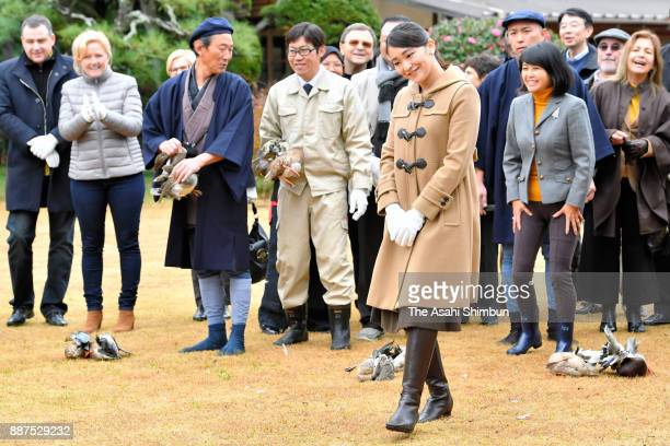 Princess Mako of Akishino reacts after releasing a duck as foreign deplomats are invited at the Shinhama Kamoba on December 1 2017 in Ichikawa Chiba...