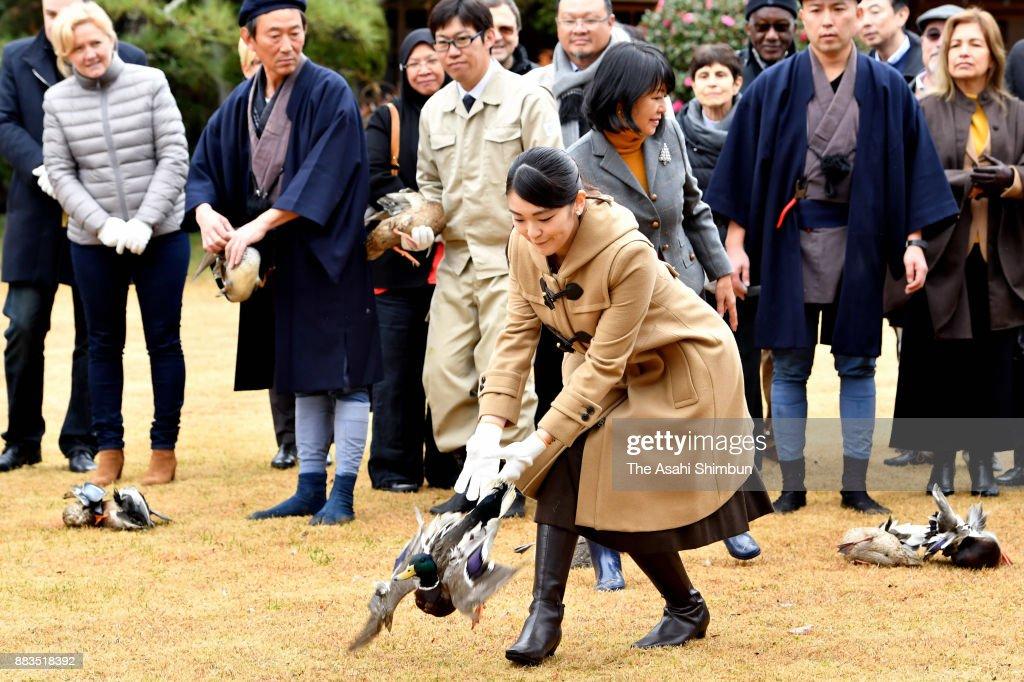 Royal Family Invites Foreign Diplomats To Shinhama Kamoba