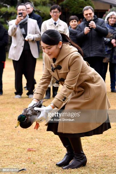 Princess Mako of Akishino releases a duck as foreign deplomats are invited at the Shinhama Kamoba on December 1 2017 in Ichikawa Chiba Japan