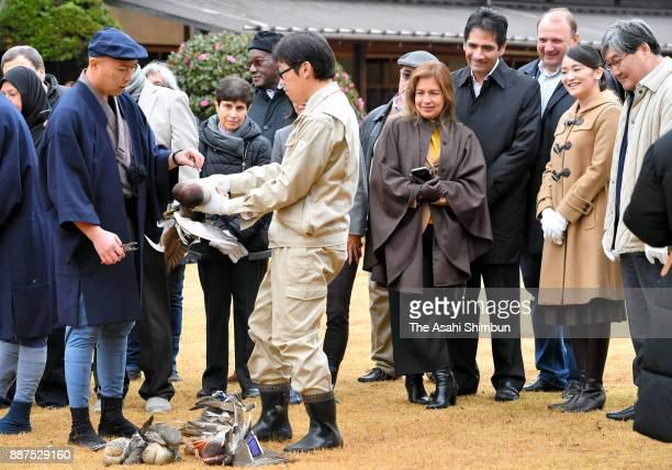 Princess Mako of Akishino talks with foreign deplomats at the Shinhama Kamoba on December 1 2017 in Ichikawa Chiba Japan