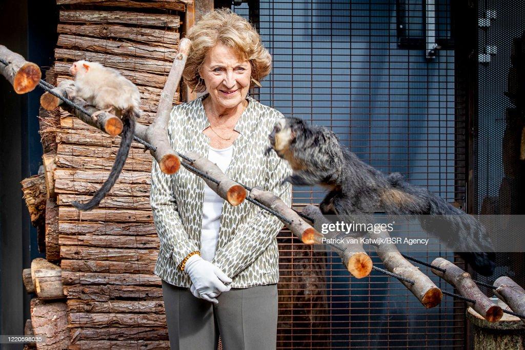 Princess Margriet Of The Netherlands Opens Apenheul Monkey Zoo In Apeldoorn : Nyhetsfoto