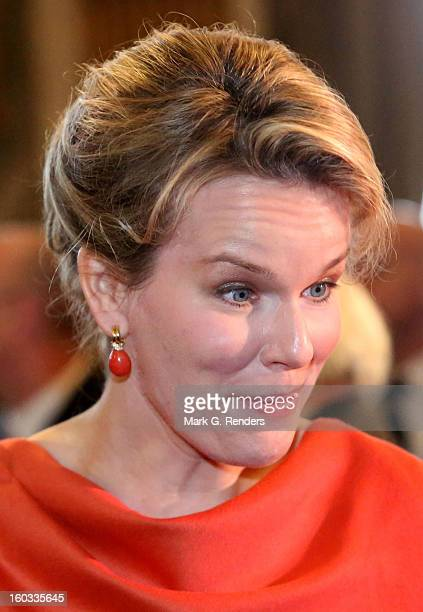 Princess Mathilde of Belgium assists a New Year Reception for Country Officials at the Royal Palace on January 29 2013 in Brussels Belgium