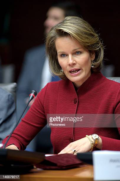 Princess Mathilde speaks at the International Conference 'Brussels Alliance to Protect Children in and out Emergencies' on February 27 2012 in...