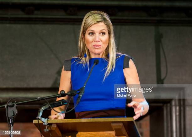 Princess Maxima of the Netherlands speaks at the Conference for International Food Stability on November 1 2012 in The Hague Netherlands