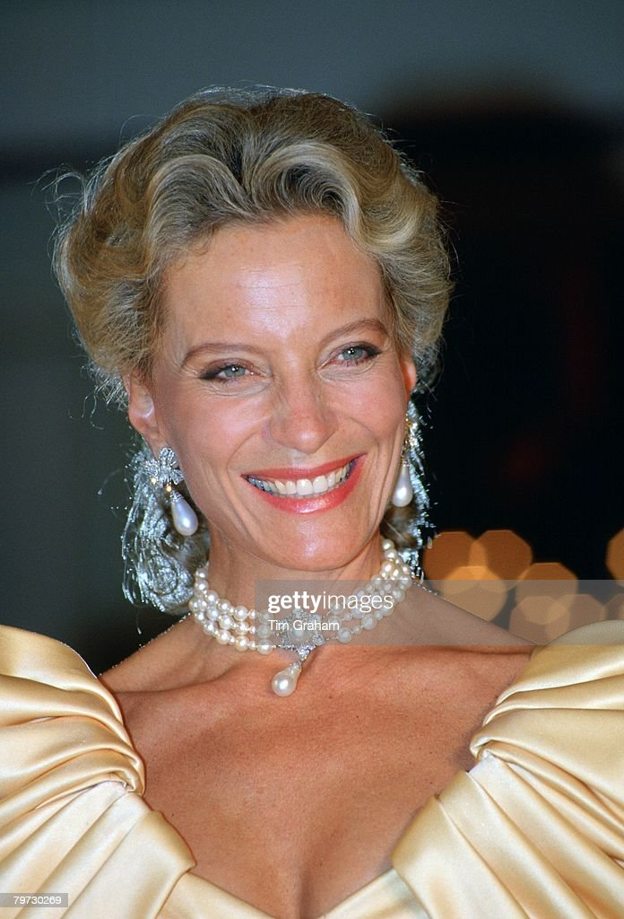 Princess Michael of Kent attends a charity ball held at Grov : News Photo