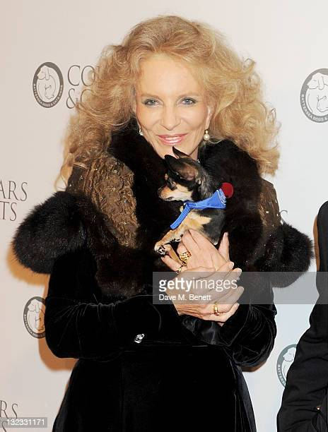 Princess Michael of Kent attends the Collars Coats Gala Ball in aid of Battersea Dogs Cats Home at Battersea Evolution on November 11 2011 in London...