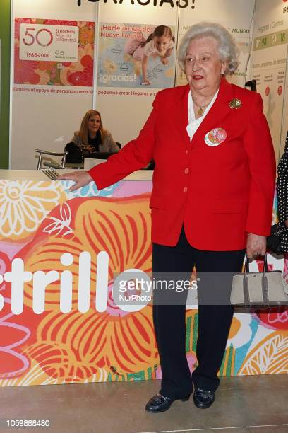 Princess Pilar de Borbon during the inauguration of El Rastrillo de Nuevo Futuro in the Cristal pavilion of the madrid country house Spain November...