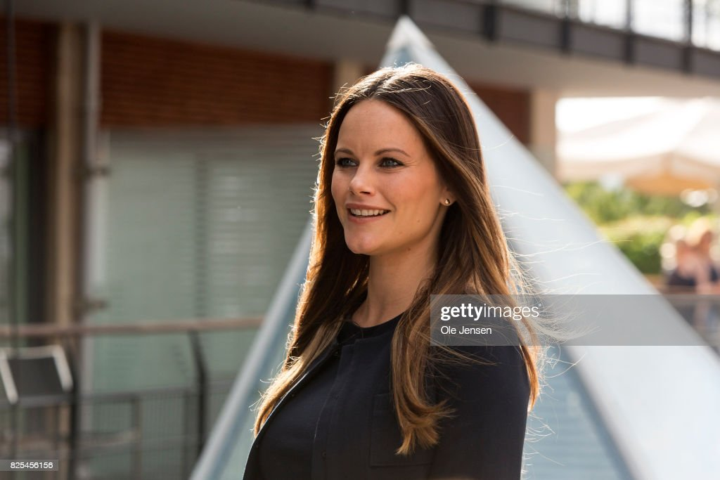 Princess Sofia of Sweden Attends A Sustainability Seminar : News Photo
