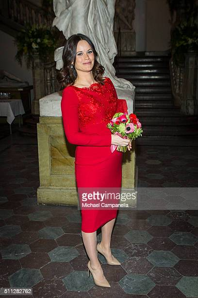 Princess Sofia of Sweden attends a formal gathering at the Royal Swedish Academy of Fine Arts on February 19, 2016 in Stockholm, Sweden.