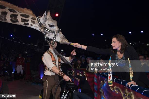 Princess Stephanie of Monaco attends the 42nd International Circus Festival in Monte Carlo on January 19, 2018 in Monaco, Monaco.