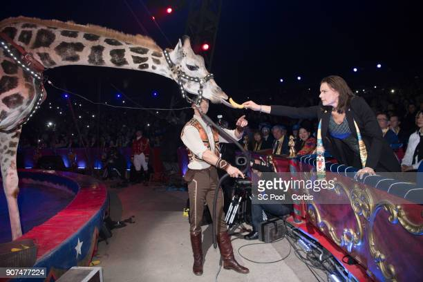 Princess Stephanie of Monaco attends the 42nd International Circus Festival in Monte Carlo on January 19 2018 in Monaco Monaco