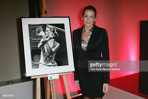 Princess Stephanie of Monaco attends the Gala and Auction for Fight Aids Monaco at the Meridien Beach Plazza on December 1, 2009 in Monte Carlo,...