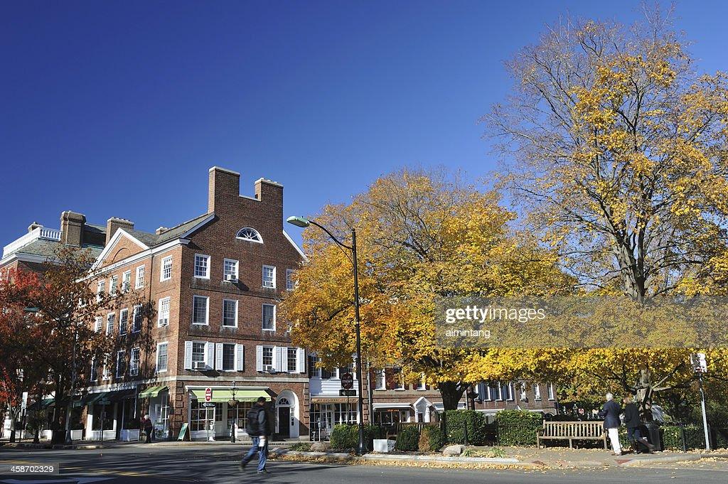 Princeton in Fall : Stock Photo