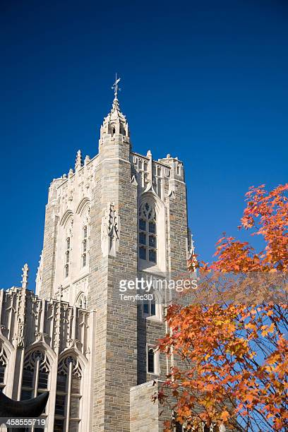 princeton university library - terryfic3d stock pictures, royalty-free photos & images