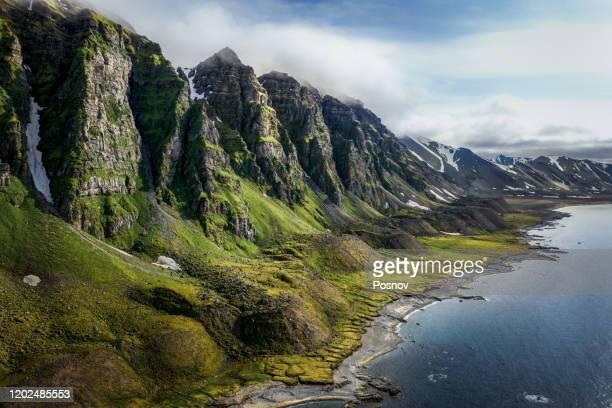 prins karls forland - スヴァールバル諸島 ストックフォトと画像