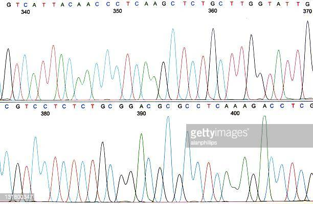 Printout of a DNA sequence chromatogram