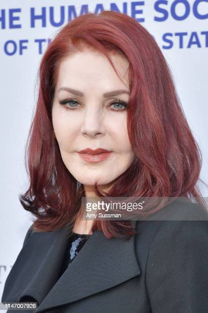 Priscilla Presley attends The Humane Society Of The United States To The Rescue Los Angeles Gala 2019 at Paramount Studios on May 04 2019 in...