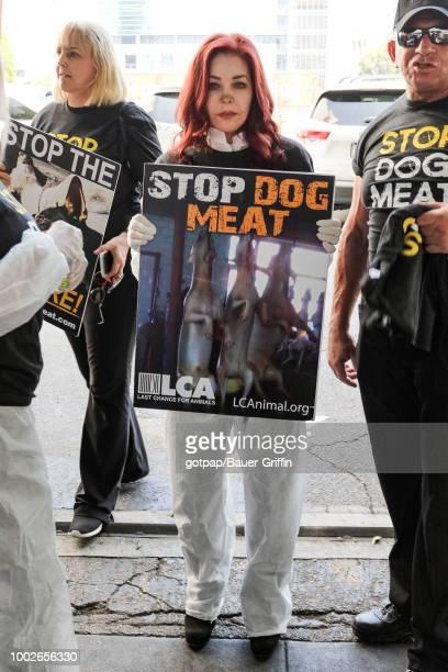 Priscilla Presley is seen on July 17 2018 in Los Angeles California