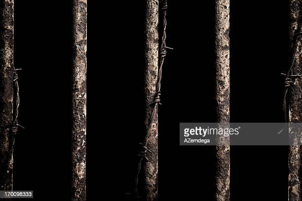 prison bars picture prison bars stock photos and pictures getty images 828