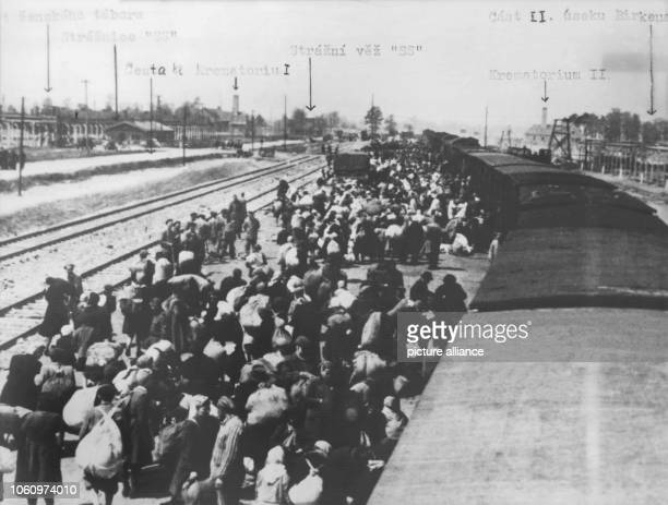 A prisoner transport from Hungaria arrives at Auschwitz concentration camp In Auschwitz near Krakow Poland a concentration camp was built by the SS...