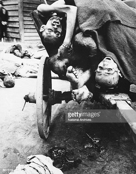 Prisoners'' bodies being removed in wagons by German civilians for decent burial May 12 1945 at Gusen Concentration Camp Muhlhausen near Linz Austria...